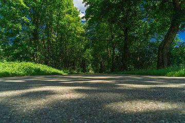 Idyllische einsame Landstraße von MyPics4u
