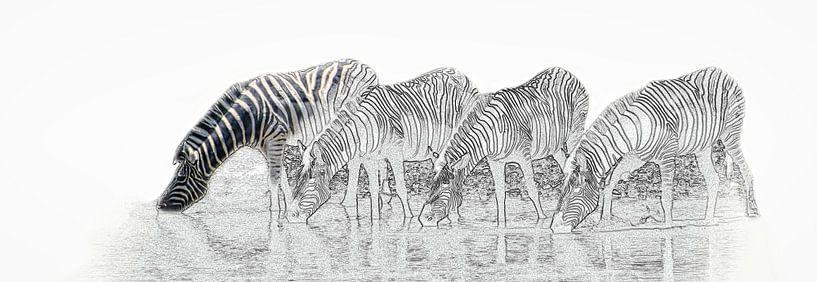 Drinkende zebra's in Etosha Nationaal Park van Rietje Bulthuis