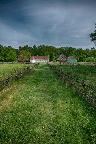 rural landscape van