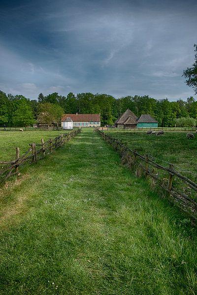 rural landscape van Jo Beerens