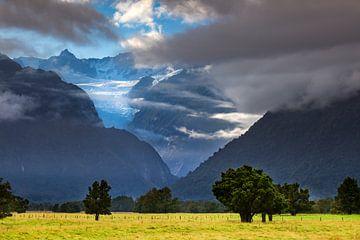 Fox Gletsjer van Antwan Janssen