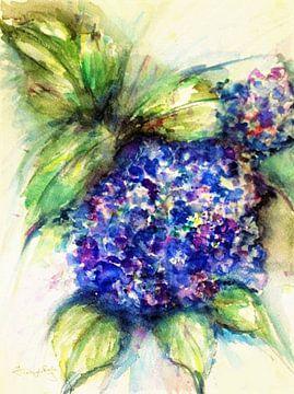 Blaue Hortensie. von Ineke de Rijk