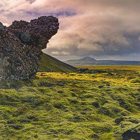 Paysage volcanique le plus important (Hveragerði ; Islande) sur Bep van Pelt- Verkuil