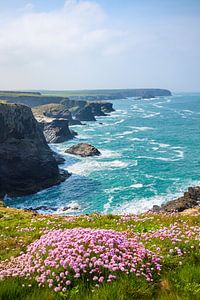 Lente aan de kust van Cornwall