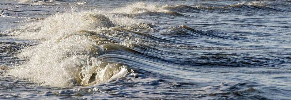Zeestroming van Gonnie van de Schans