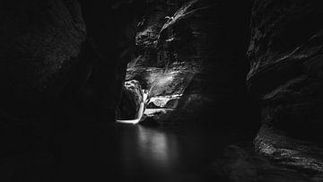 Seide von Tim Newnham Photography