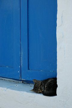 Meanwhile in Greece... van Gunther de Boer