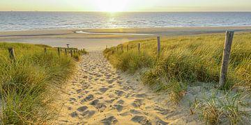 Life on the Beach sur Dirk van Egmond