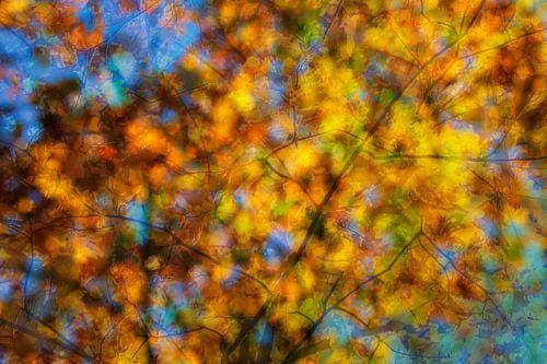 Autumn feeling von Ilya Korzelius