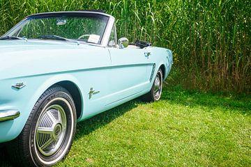 Ford Mustang van Sjoerd van der Wal