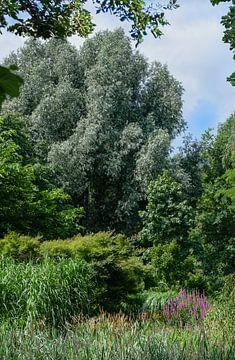 Der Garten von Frans van der Gaag