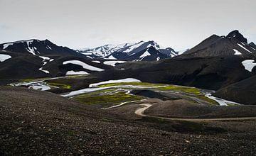 Wegen en rivieren | IJsland (1) van Willem van den Berge
