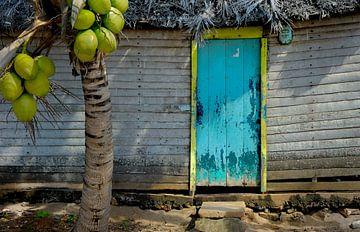 Cubaanse Vissershut van M DH