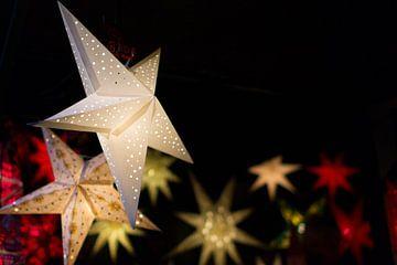 Kerstster Wit van Perry Wiertz