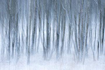 Abstraktes Bild von Winter und Nebel von Sander Grefte