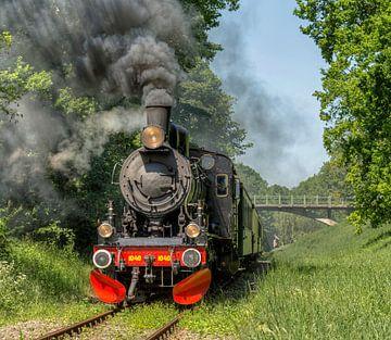 Miljoenenlijntje in Zuid-Limburg van John Kreukniet