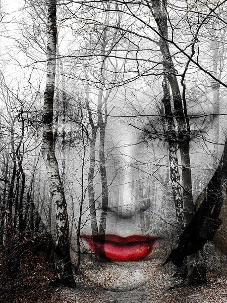 Het gezicht in het bos van Gabi Hampe