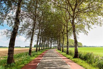 Wierumerschouwsterweg von Evert Jan Luchies