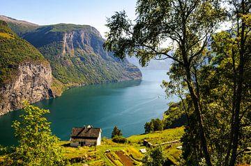 Blick von den hohen Klippen über den Aurlandsfjord in Norwegen von Sjoerd van der Wal