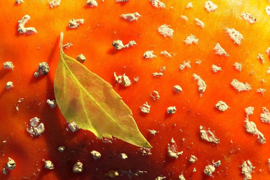 Herfstblad op vliegenzwam