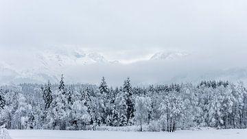 Sneeuwlandschap in Maishofen (A) van Martine Dignef