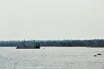 Nil-Fischer von Marije Zwart