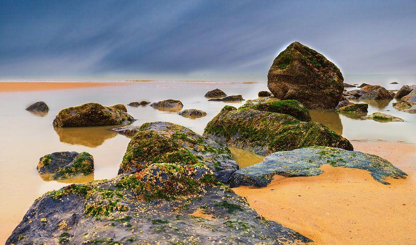 Beachrock van Wim van D