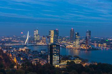 Rotterdam Kop van Zuid in the blue hour van