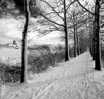 Vianen met Vrijerslaantje in de sneeuw von Paul van der Lugt