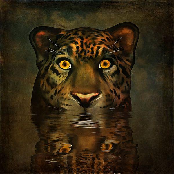 Dierenrijk – Grote kat kijkt je recht in de ogen van Jan Keteleer