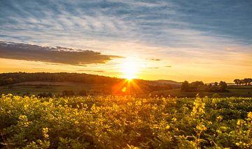 Zonsopkomst bij Mamelis in Zuid-Limburg von John Kreukniet