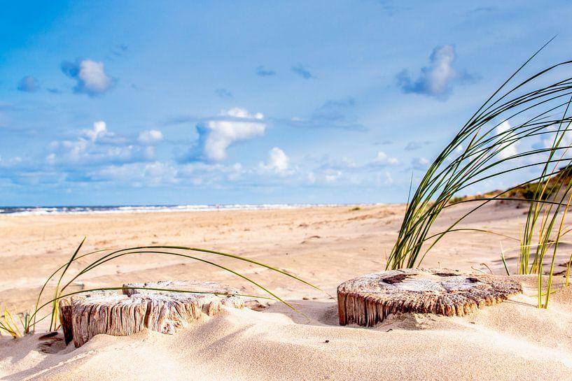 Op het strand van Geert Huberts