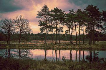 Pflichtfeld: schwebende Luft von Janneke Masselink