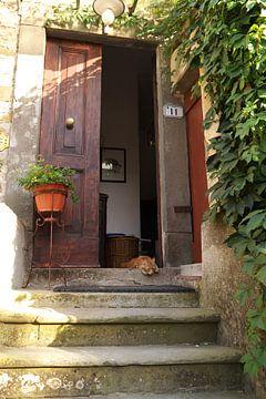 Ferienkatze in der Tür eines Agriturismo in Italien bei Pisa von Christa Stroo fotografie