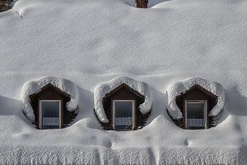Verschneite Dachgauben von