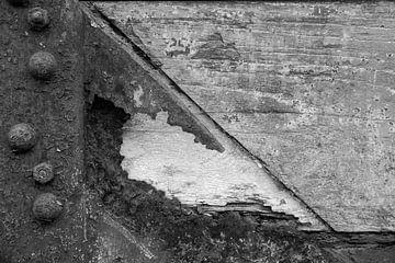 Kurzfassung in Schwarzweiß 2 von Rene van de Esschert
