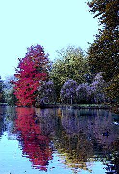 Herbst Bild von Greta Lipman