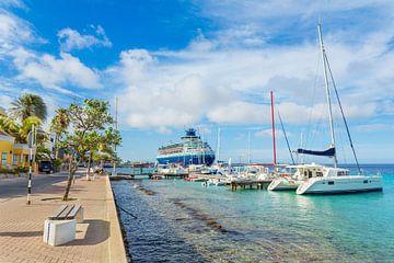 Boulevard op Bonaire met cruiseschip en boten op zee van Ben Schonewille
