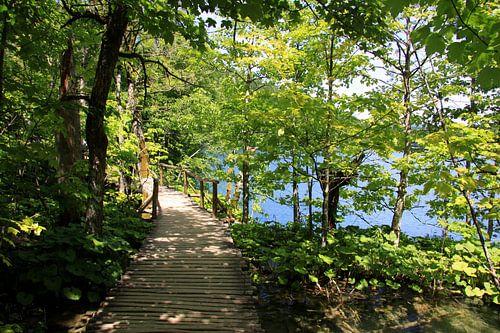 Nationalpark Plitvicer Seen, Kroatien van