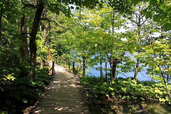 Nationalpark Plitvicer Seen, Kroatien van Renate Knapp