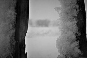 Schneeflocken von Hannelore