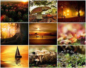 herfst collage 4 van