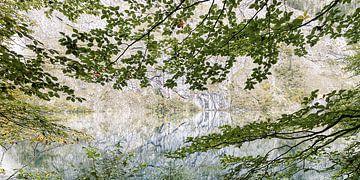 Obersee IV von Michael Schulz-Dostal