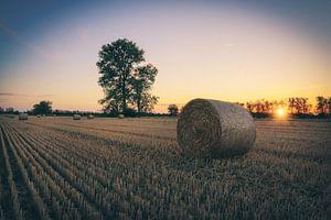 Heuballen im Sonnenuntergang von Skyze Photography by André Stein