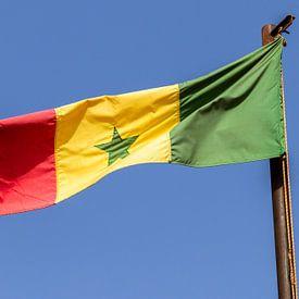 Nationale vlag Senegal van videomundum
