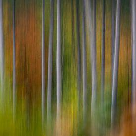 Autumnvibes van Christl Deckx