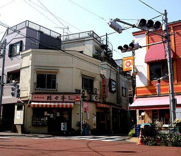 'Ueno', Tokyo- Japan van Martine Joanne