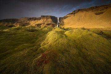 Het mosveld, IJsland von Sven Broeckx