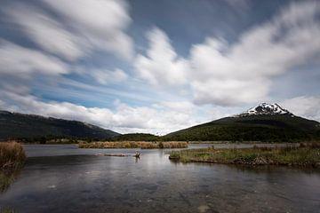 Lago del Roca sur
