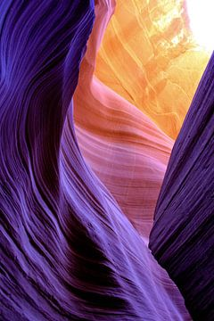 Colourful Canyon  van Denise Rubino